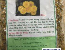 Hoa Cúc /Kim Cúc
