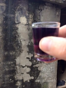 Rượu ba kích tím sau khi ngâm