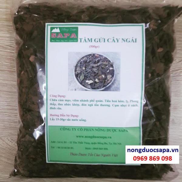 www.mangraovat.com: Bán tầm gửi cây ngái chữa đau nhức xương khớp.