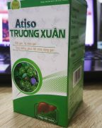 atiso-truong-xuan2
