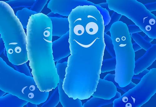 Lợi khuẩn Bifido trong men vi sinh Bifina giúp chấm dứt viêm đại tràng